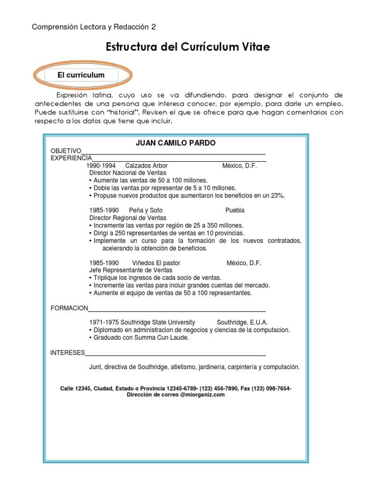 Estructura Del Currículum Vitae
