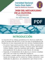 Seminario n 02 Bioquímica Alteraciones Del Metabolismo de La Glucosa (1)