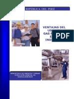 20110207-GAS-20NATURAL.pdf