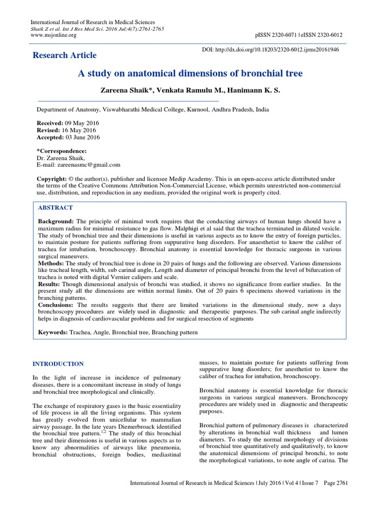 A Study on Anatomical Dimensions of Bronchial Tree | Lung | Respiration