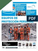 cosapino_edicion4.pdf