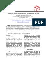 Informe 4. Observacion Microscopica de Bacterias