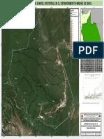 Deforestacion_distrital_MDD