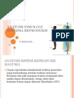 Anatomi Fisiologi Systema Reproduksi