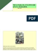 Ficha Tecnica Para El Cultivo de Papaya Maradol