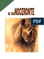 Capa do livro O rinoceronte