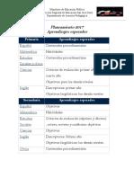 Planeamiento 2017.pdf