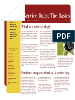 service dogs newsletter new
