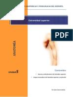 5_extremidad_superior.pdf