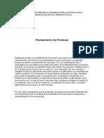 Estudio de Fatibilidad Economica Para La Produccion y Comercializacion de Carne de Pollo