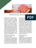 Artículo Carne Artificial