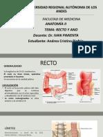Anatomia Exposicion Recto y Ano