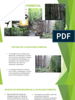 Ecología forestal 1.pptx