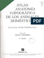 160 manual basico de insfraestructuras en produccón de cerdos.pdf