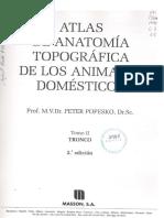Atlas de anatomia topografica de los animales domesticos (Peter Popesko) Tomo II.pdf