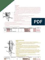 Muscles of Gait (Biomechanics)