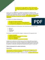 Auditoría Informática resumen