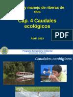 04 Caudales Ecologicos Conceptos 2017 Backup