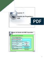 Capitulo 11 HSE y Gestion de Proyectos.pdf