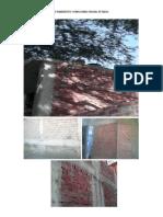 Estructuras de Ladrillo Pandereta y King Kong en Mal Estado Edgard Anton