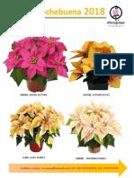 Catalogo Nb 2016 Floraplant