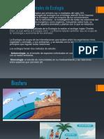 Diapositiva Medio AmbienteUapa