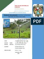 Trabajo-Riegos I - Polit. y Estrat..pdf