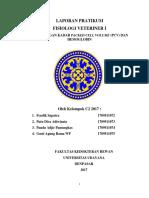 Laporan Pratikum PCV Dan HB