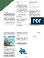 Triptico_sobre_el_Agua (1).docx