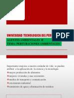 01 PERTURBACIONES AMBIENTALES (2).pptx