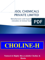 Animal Health Products,Herbal veterinary products,Natural Choline Chloride,Poultry Feed Additives Supplier