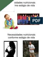 Necessidades Nutricionais Conforme Estágio de Vida