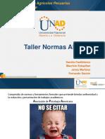 NORMAS APA (2) (1)