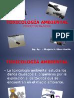 Toxicologaambientalconceptosbsicos 120624182545 Phpapp02 (1)