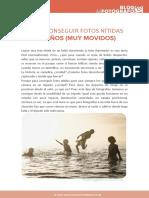 fotos-nitidas-ninos-movidos.pdf