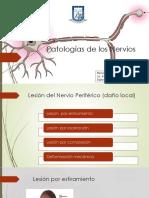 Patologías de Los Nervios (Clase 3)