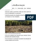 A Desflorestação Trabalho