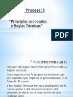 Principios y Reglas Tecnicas Ppt