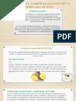 PREPA Presentación1.
