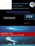PALEONTOLOGIA CONDRICTIOS OSTEOICTIOS