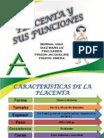 Placenta 702