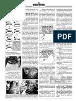 194_pag_18 MOTOR 1600 A AR---03.pdf