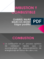 Combustion y Combustible[1]