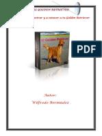 El Goden Retreiver.pdf