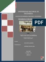 DESARROLLO+ORGANIZACIONAL.pdf