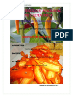 234363640-Informe-Pasta-de-Aji.docx