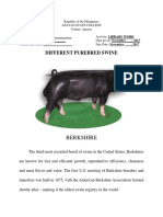 swine bred, major nutrients needed and care management.docx