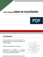 55837199-glucogenesis