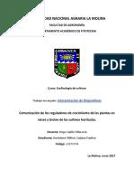 3er Trab. Interpretacion-Comunicación de Los Reguladores de Crecimiento