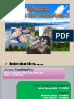 Kelompok 7 _ Pkm-k_bakica